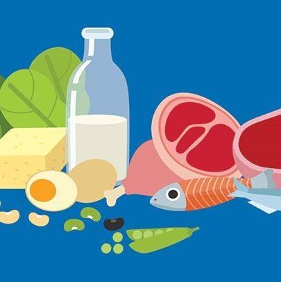 Protein foods illustration